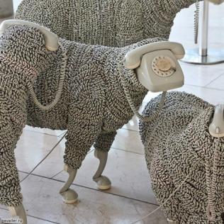 Sheep Tubes